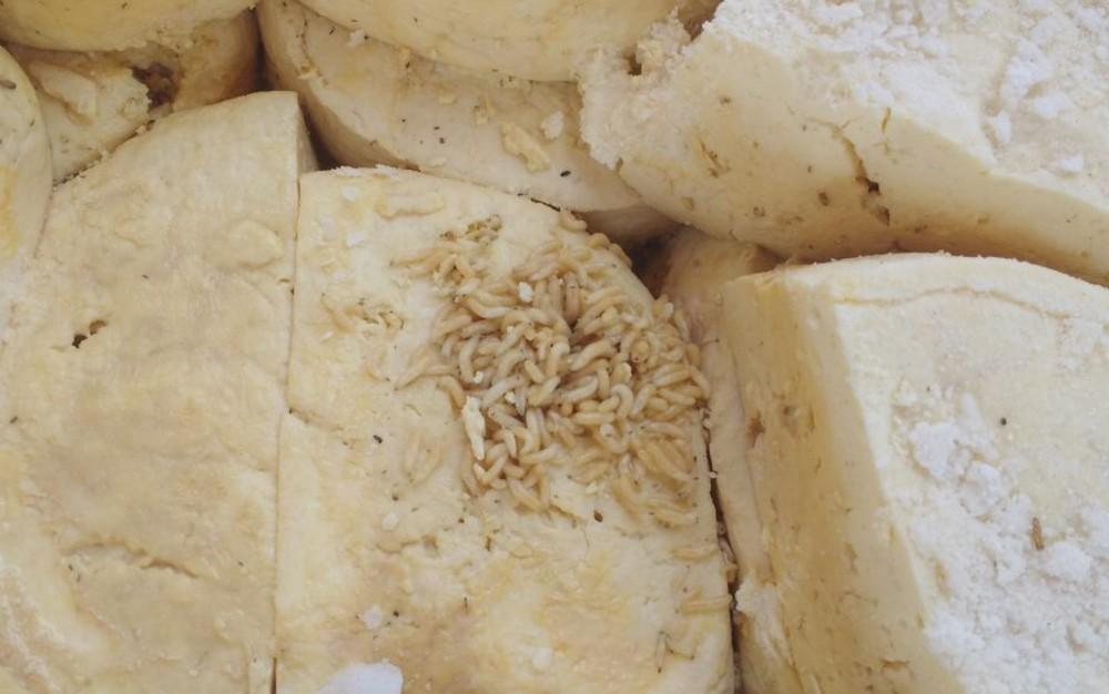 Polícia encontrou larvas em queijos que seriam ralados e vendidos (Foto: Divulgação/Polícia Civil)